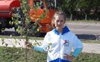 Городская акция «Посади своё дерево»