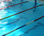 I место по плаванию